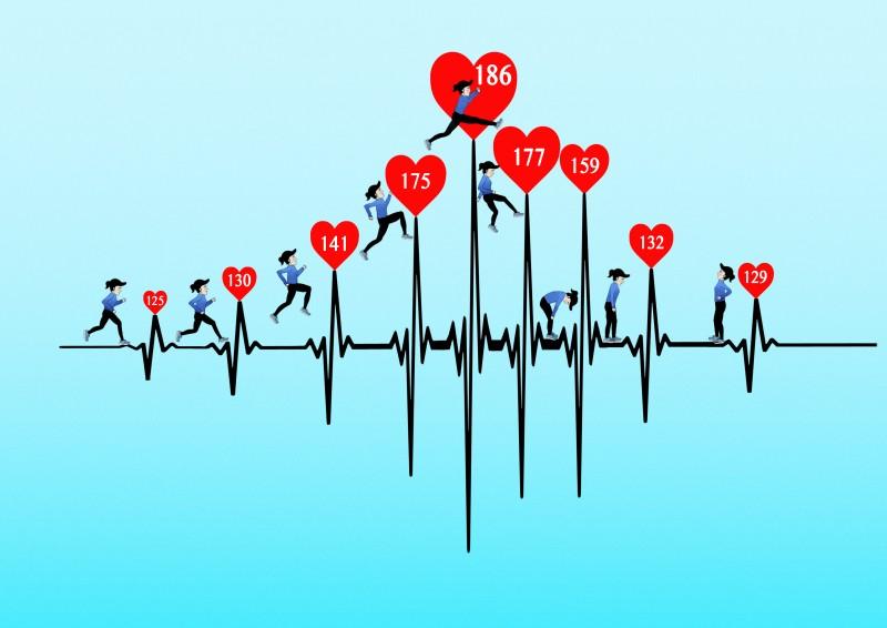 De rol van je hartslag bij cardi